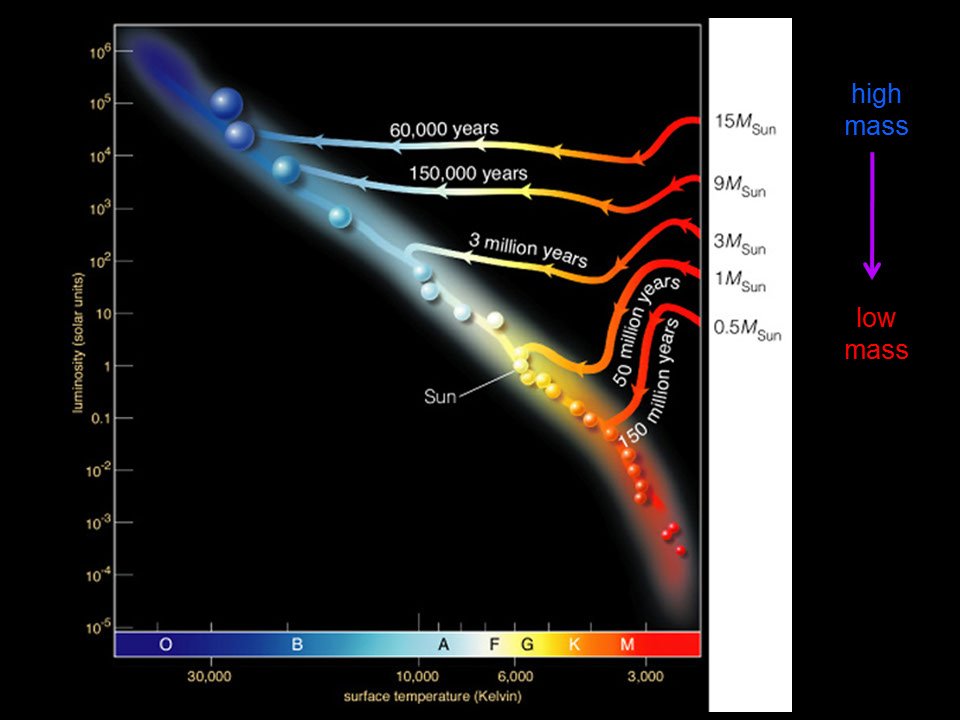 Star formation on the h r diagram high mass stars follow somewhat different evolutionary tracks as they evolve through their protostellar stages eventually landing farther up along the main ccuart Gallery